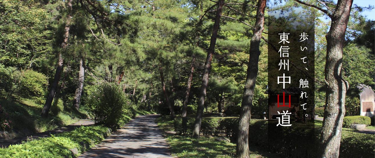 イメージ:歩いて、触れて。東信州中山道