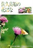 佐久高原の花々